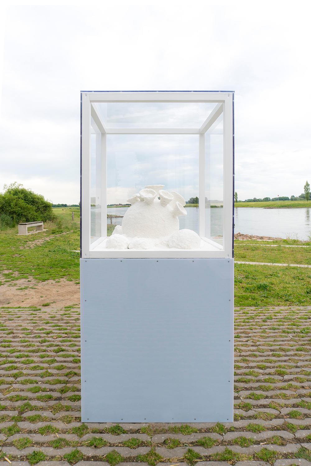 You are browsing images from the article: Salt Flowers in the IJssel Biennial, NL