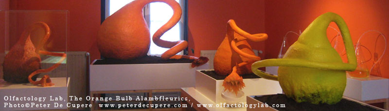 You are browsing images from the article: Solo-exhibition: OLFACTOLOGY LAB- The Orange Bulb Alambfleurics